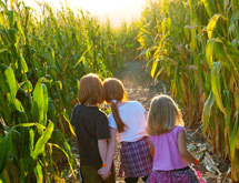 Giant Corn Maze - Southeastern Virginia